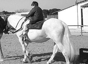 therapeutic-riding-2